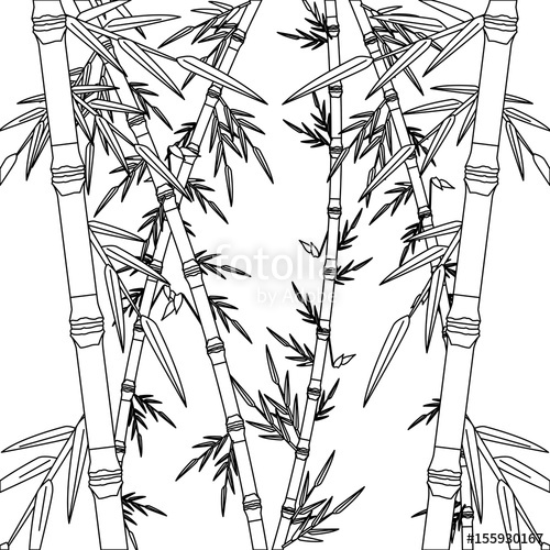 500x500 Bamboo Forest Set. Spa Nature. Plant Tree With Leaves. Vector