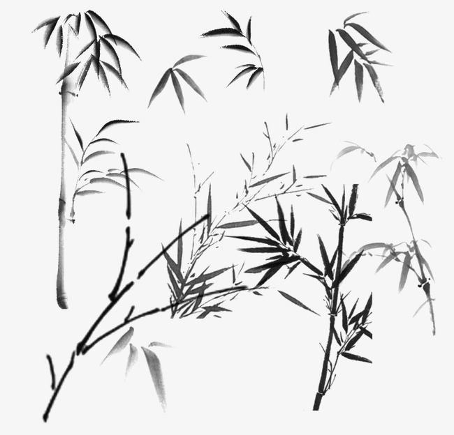 650x624 Bamboo Bamboo Sketch Icon,bamboo,bamboo Leaves, Painted Image