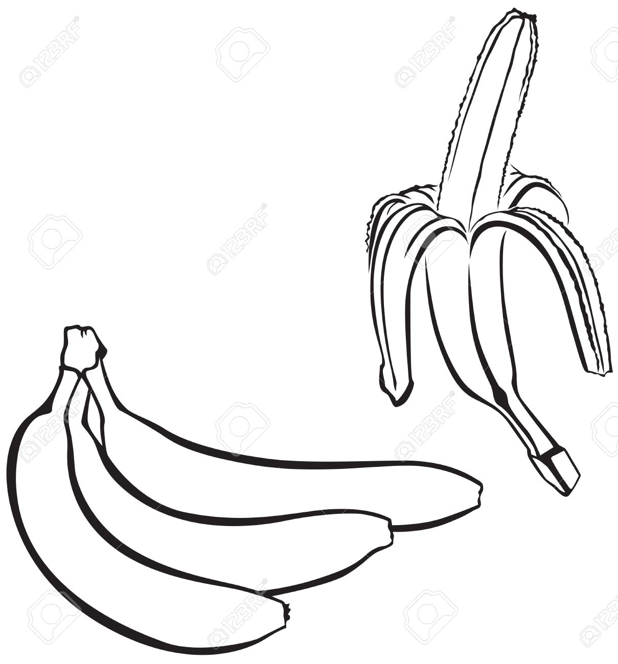 1209x1300 Contour Image Of A Bunch Of Bananas And One Peeled Banana Royalty