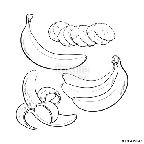 500x500 Sliced, Peeled, Singl And Bunch Of Three Ripe Banana, Sketch Style