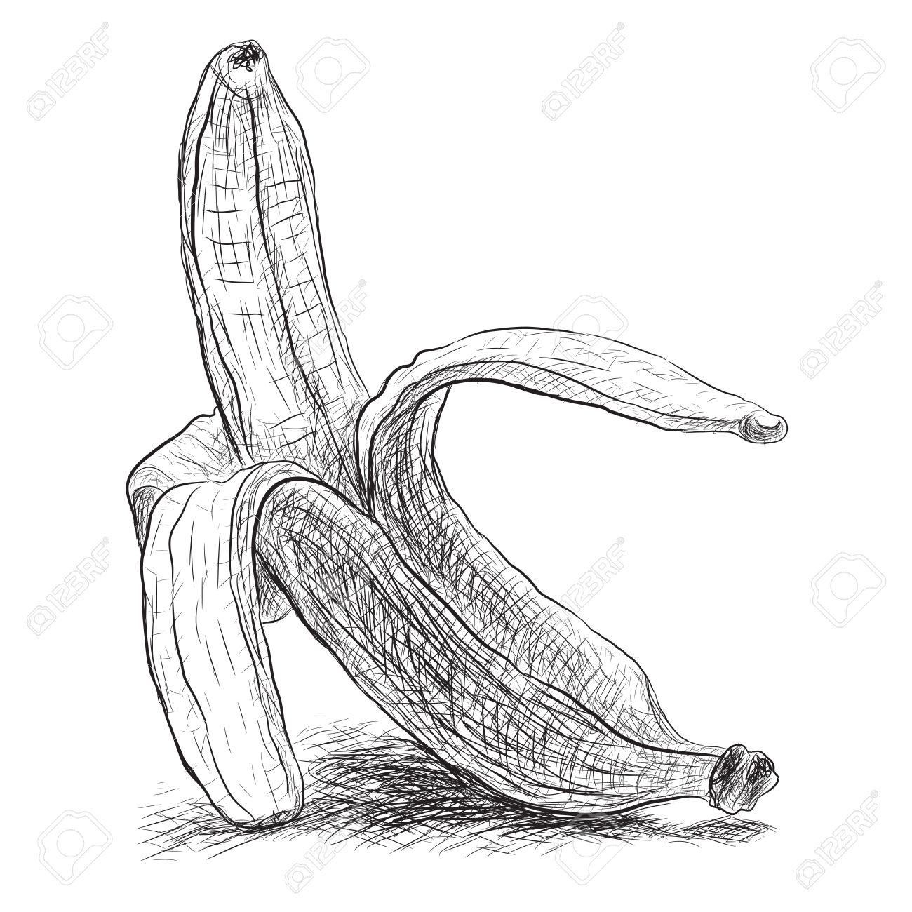 1300x1300 Sketch Peeled Banana, Vector Illustration Royalty Free Cliparts