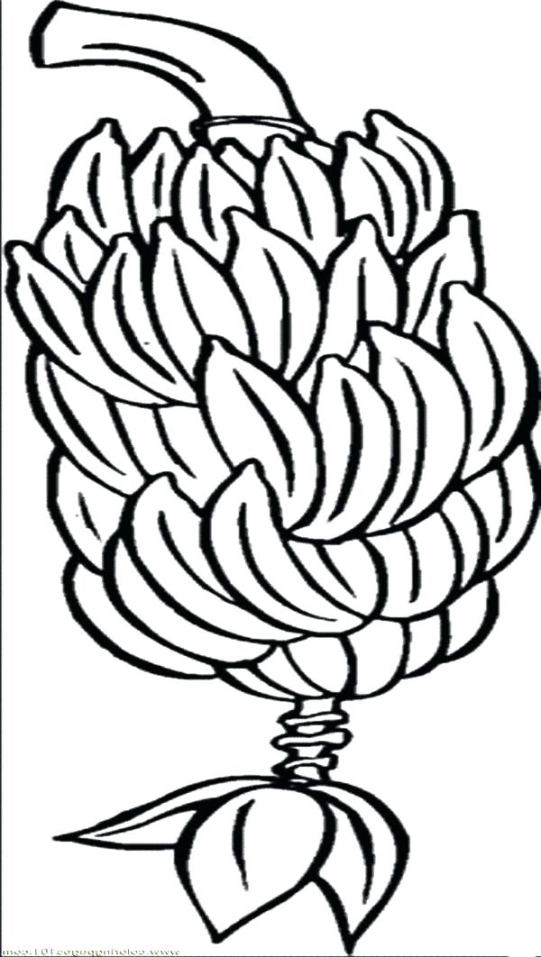 600x1062 Bunch Of Bananas Coloring Page Cartoon Bunch Of Bananas