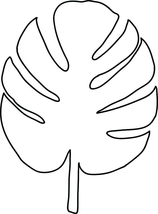 557x753 Leaf Stencils Printable Palm Leaves Coloring Pages Banana