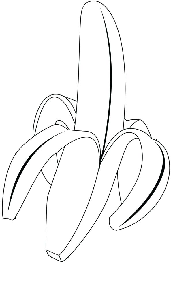 Banana Leaf Drawing at GetDrawings.com | Free for personal use ...