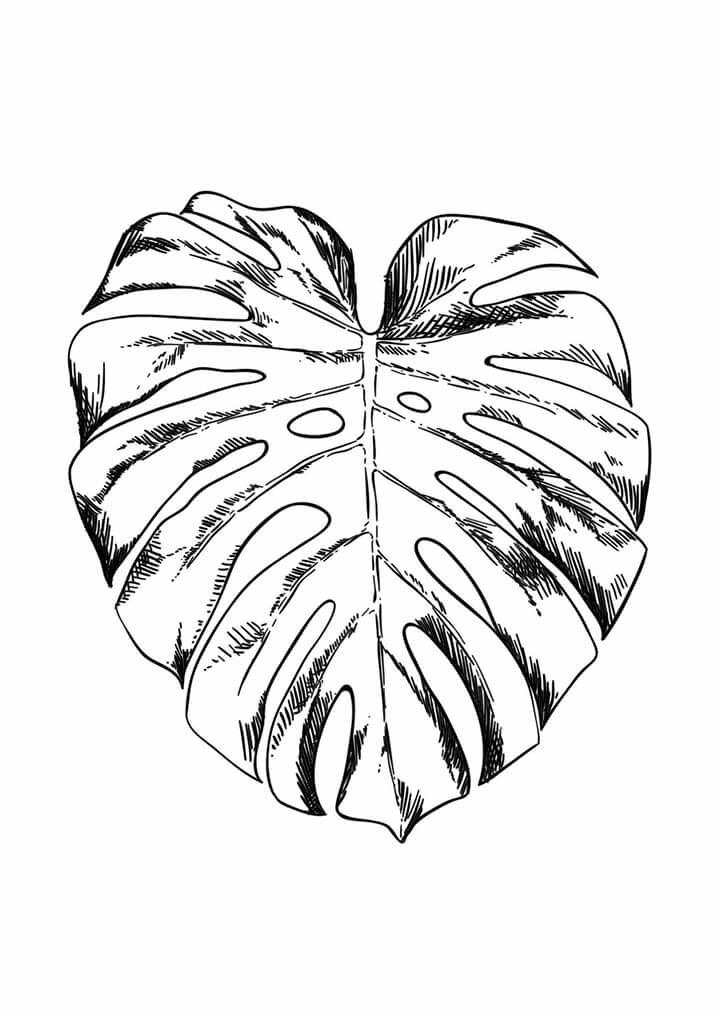 720x1019 Doodle,drawing,illustration,ink,zentangle,jungle,leaves,line