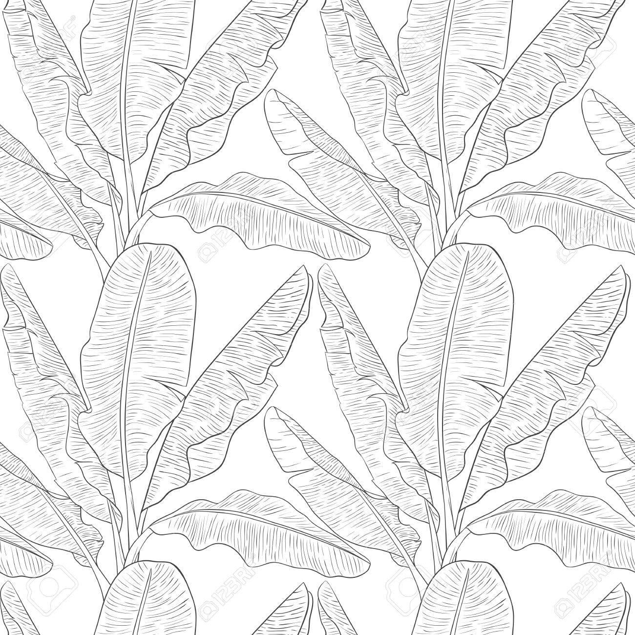 1300x1300 Banana Leaves Pattern Vector Royalty Free Cliparts, Vectors,