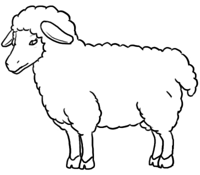 400x350 How To Draw A Sheep