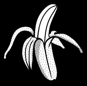 Banana Peel Drawing