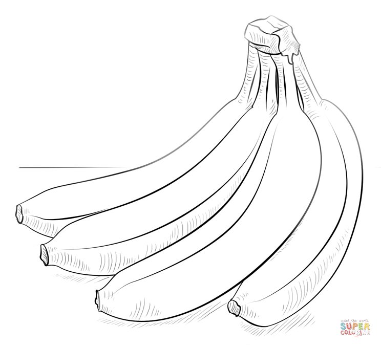 744x678 Bunch Of Bananas Coloring Page Free Printable Coloring Pages