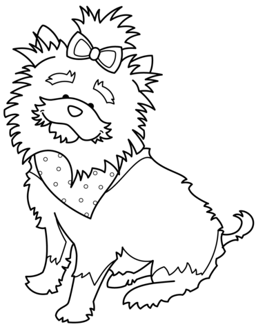 371x480 Funny Yorkshire Terrier With Bandana Coloring Page Free