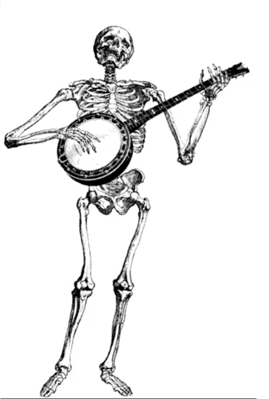 Banjo Drawing