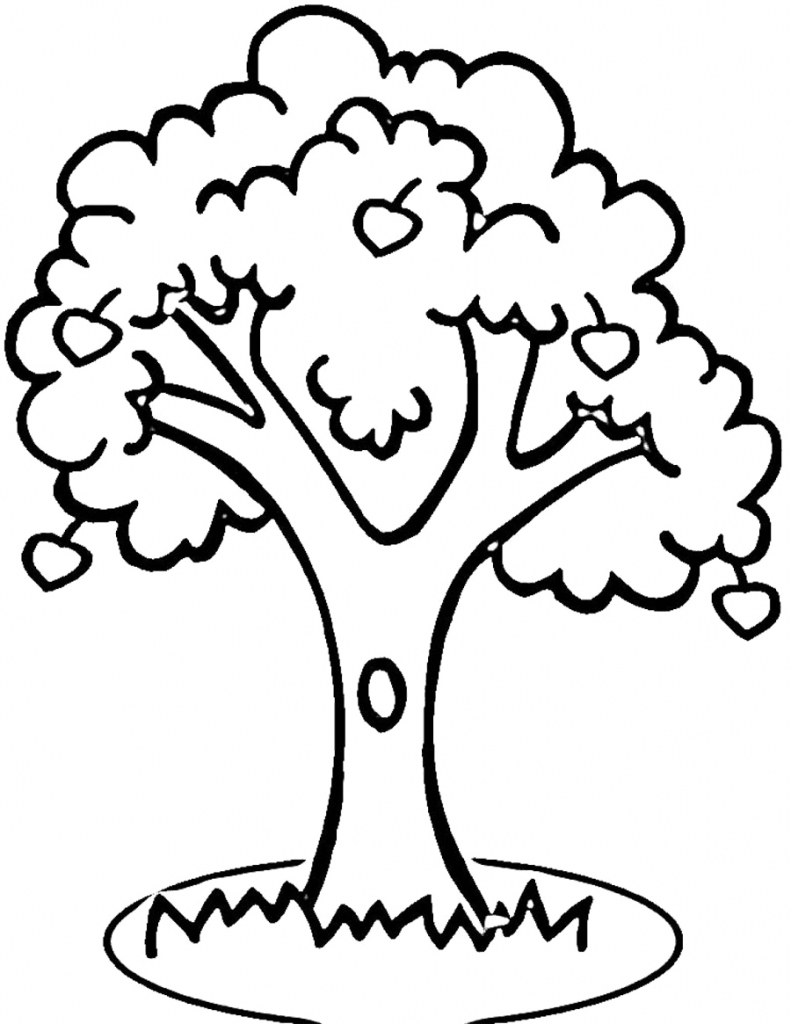 791x1024 Outline Drawing Of A Tree Tree Outline Drawing