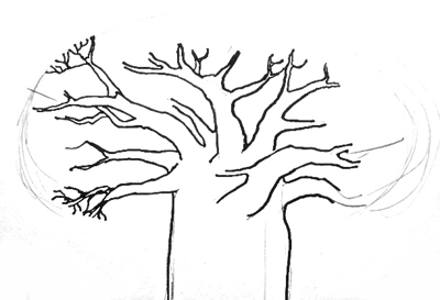 440x300 How To Draw A Baobab Tree