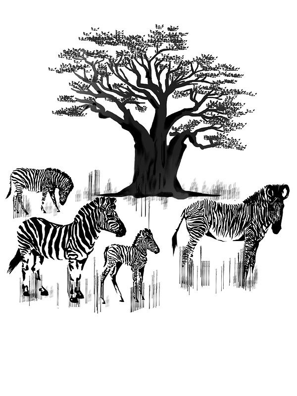 600x800 Zebra And Baobab Tree Stickers By Lotacats Redbubble