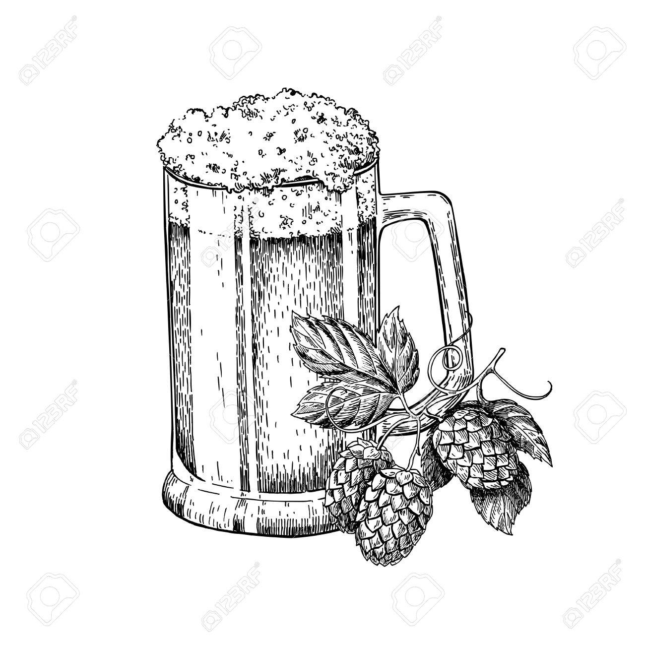 1300x1300 Beer Glass Mug With Hop. Sketch Style Vector Illustration. Hand