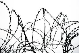 275x183 Image Result For Barbed Wire Drawing Year 9 Barbed Wire