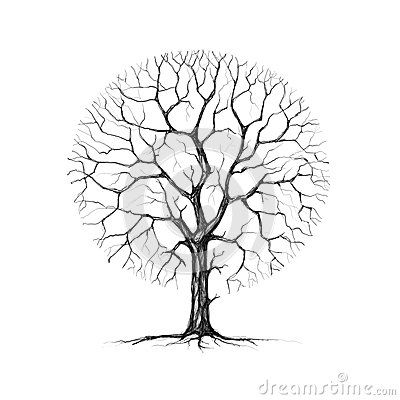 400x400 Awesome Pictures Of Bare Trees In Winter A Tree Winter Drawing