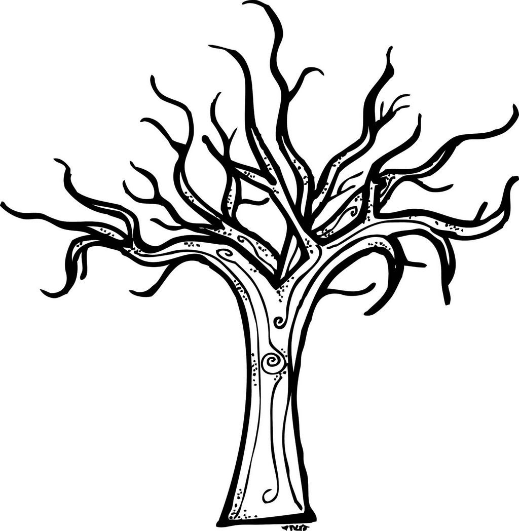 1024x1048 Bare Tree Coloring Pages For All Ages