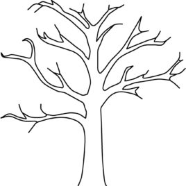 268x268 Bare Tree Coloring Sheet Coloring Page