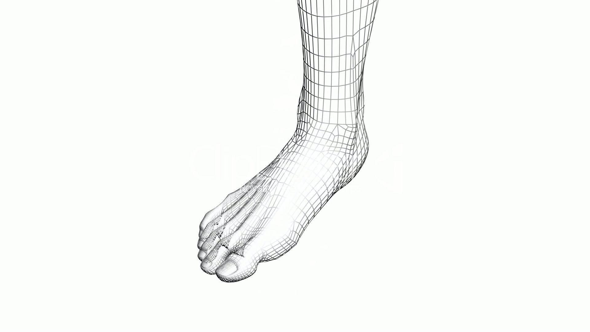 1920x1080 Rotation Of 3d Foot.leg,health,barefoot,foot,beauty,care,human