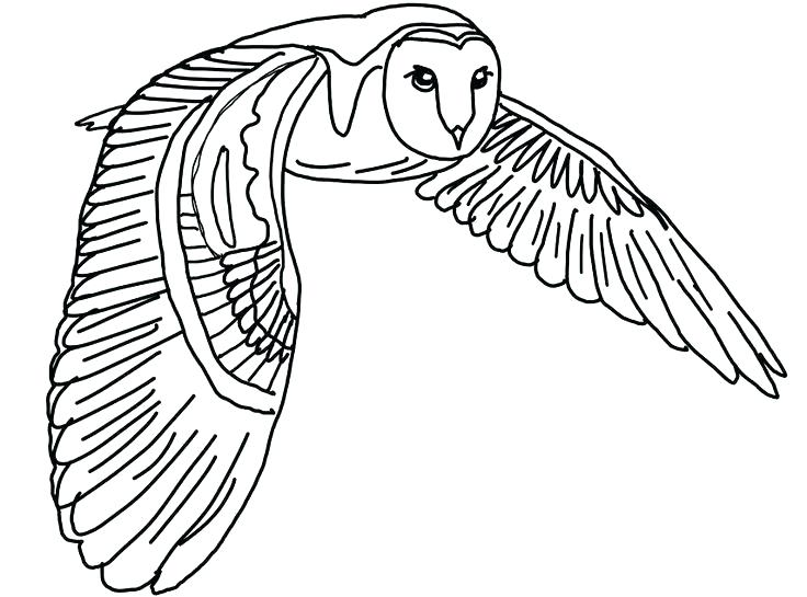 736x545 Barn Coloring Pages Free Joandco.co