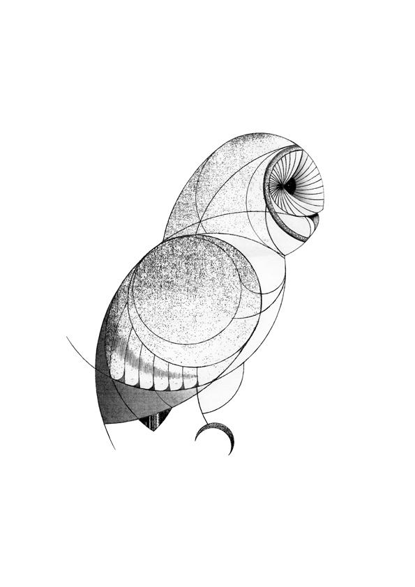 595x842 Barn Owl