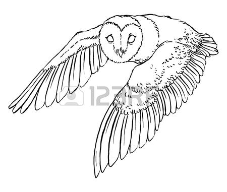 450x381 Barn Owl Clipart