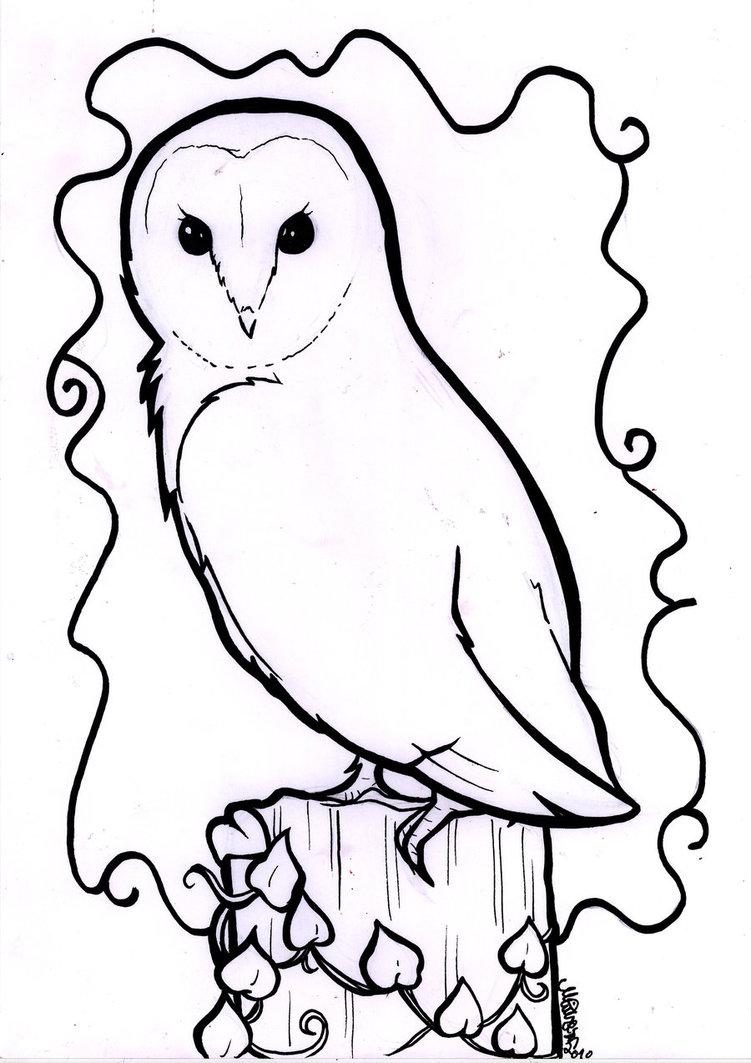 751x1063 Barn Owl Line Drawing Owl Crafts Owl, Drawing Owls