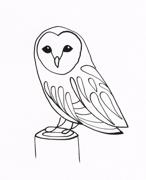 500x617 Barn Owl Pen And Ink Art