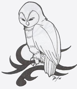 305x350 Barn Owl Tribal By Shanachie Fey