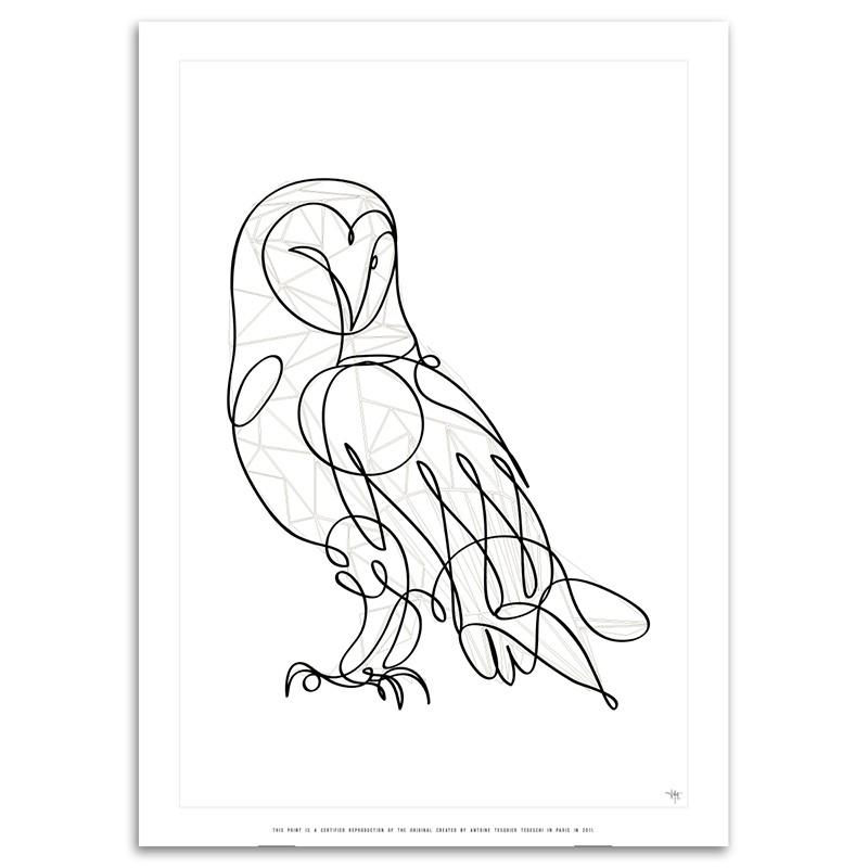 800x800 Barn Owl Certified Art Print By Antoine Tesquier Tedeschi For Hu2