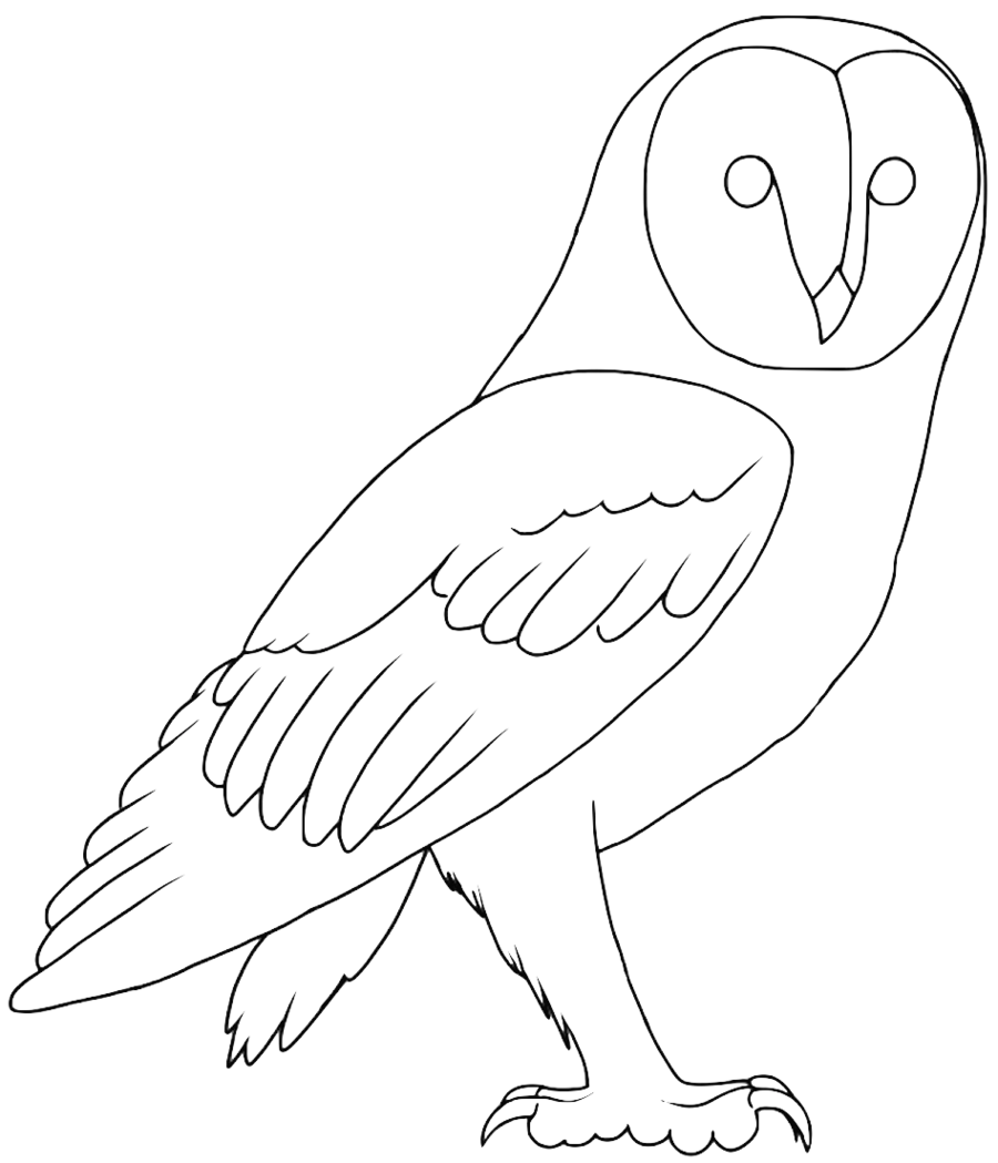 900x1049 Free Barn Owl Lineart By Projectowl