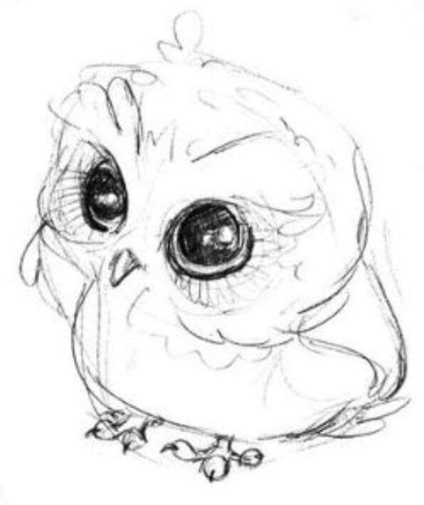 596x709 22 Best Chloe's Owls Images On Cute Owl Drawing