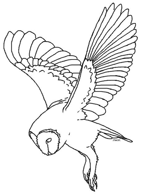 456x631 Barn Owl Lineart 3 By Ehlowel Owl Owl, Barn And Bird