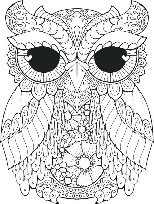 497x659 Excellent Owls Coloring Pages Best Of Animal Barn Owl Color Me