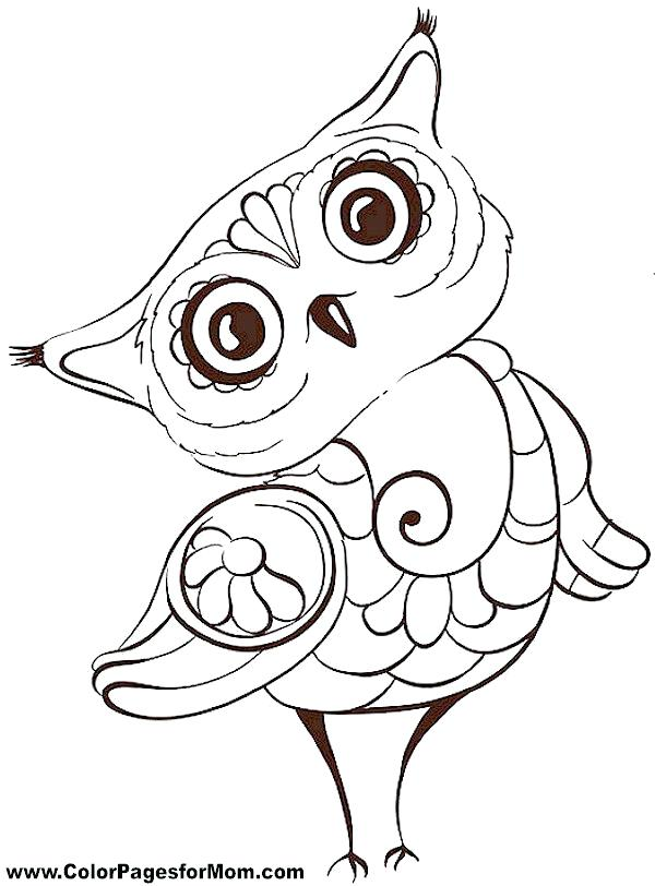 600x812 Owl Coloring Pages To Print