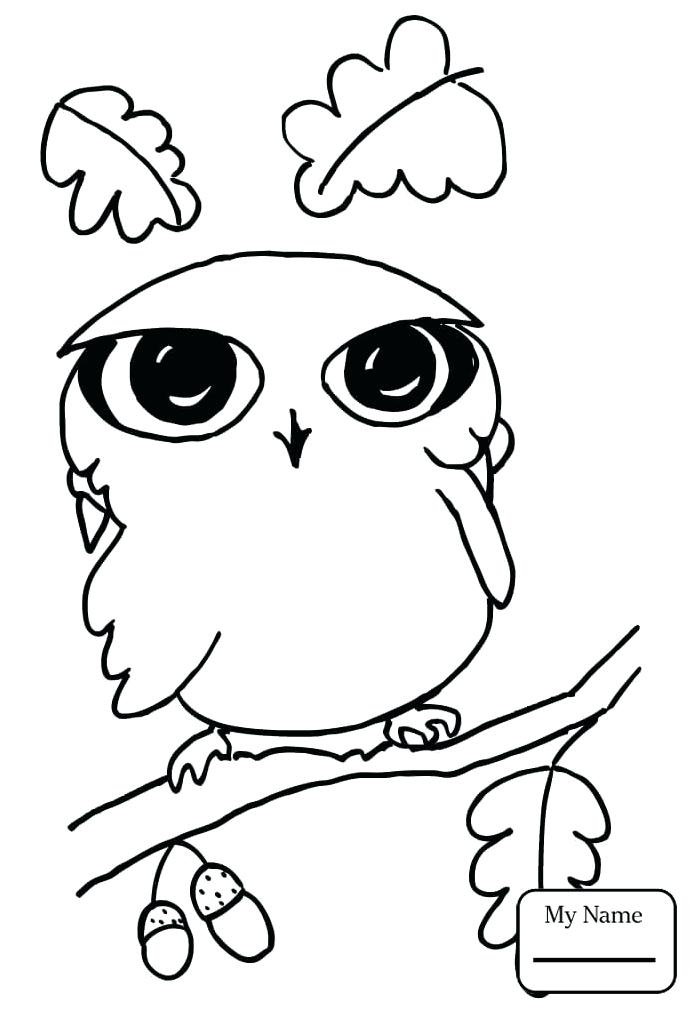 692x1012 Barn Owl Coloring Page Detail For The Barn Owl Trust Barn Owl