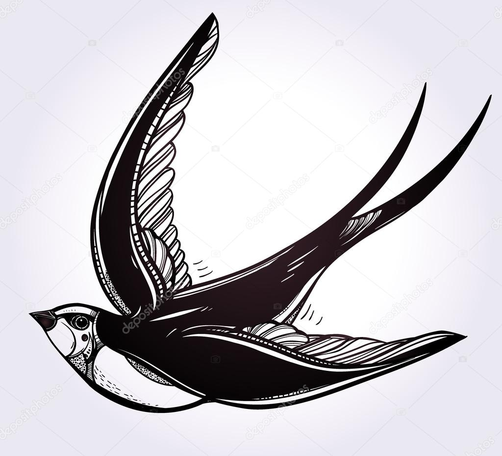 1024x931 Hand Drawn Swallow Bird Vintage Retro Style. Stock Vector