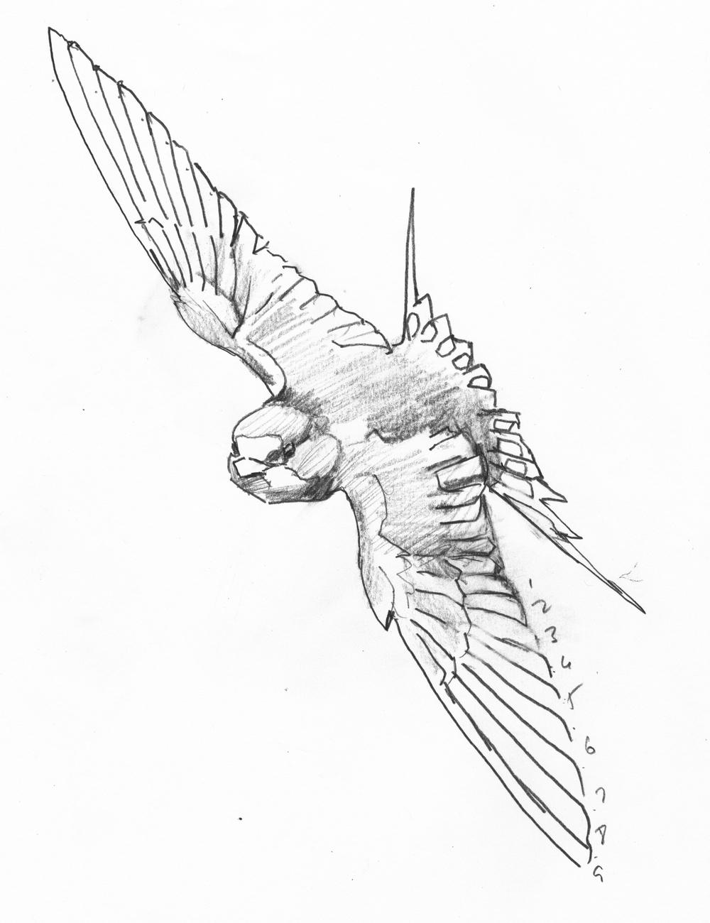 1000x1300 Sketchbook Jim Turanchik