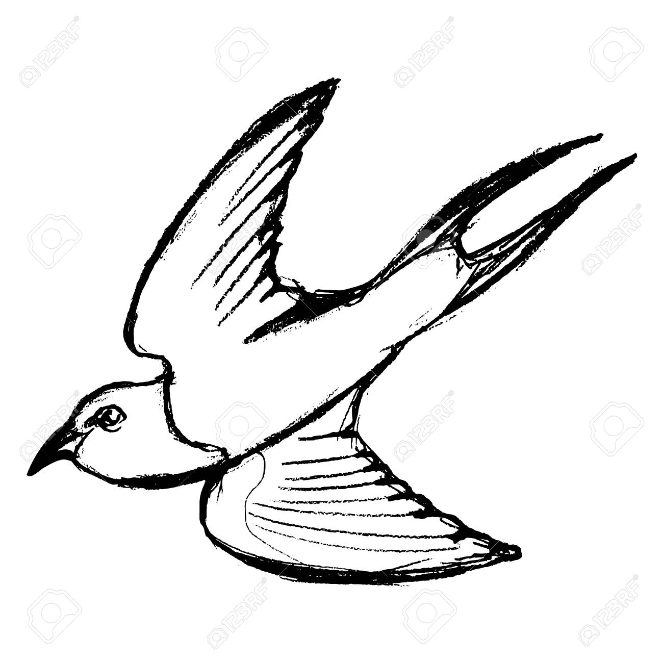 1300x1300 Vector, Sketch, Hand Drawn Illustration Of Swallow Royalty Free