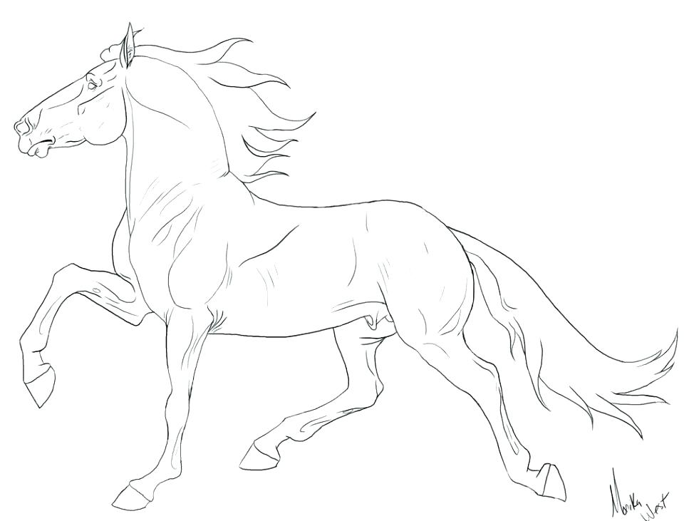 974x731 Breyer Coloring Pages Horse Coloring Pages Large Size Of Coloring