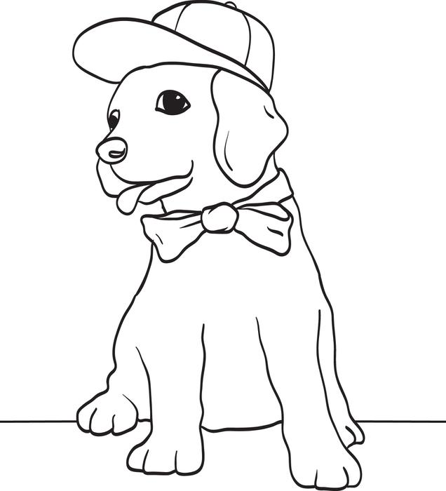 636x700 Free, Printable Puppy Dog Wearing A Baseball Cap And Bow Tie