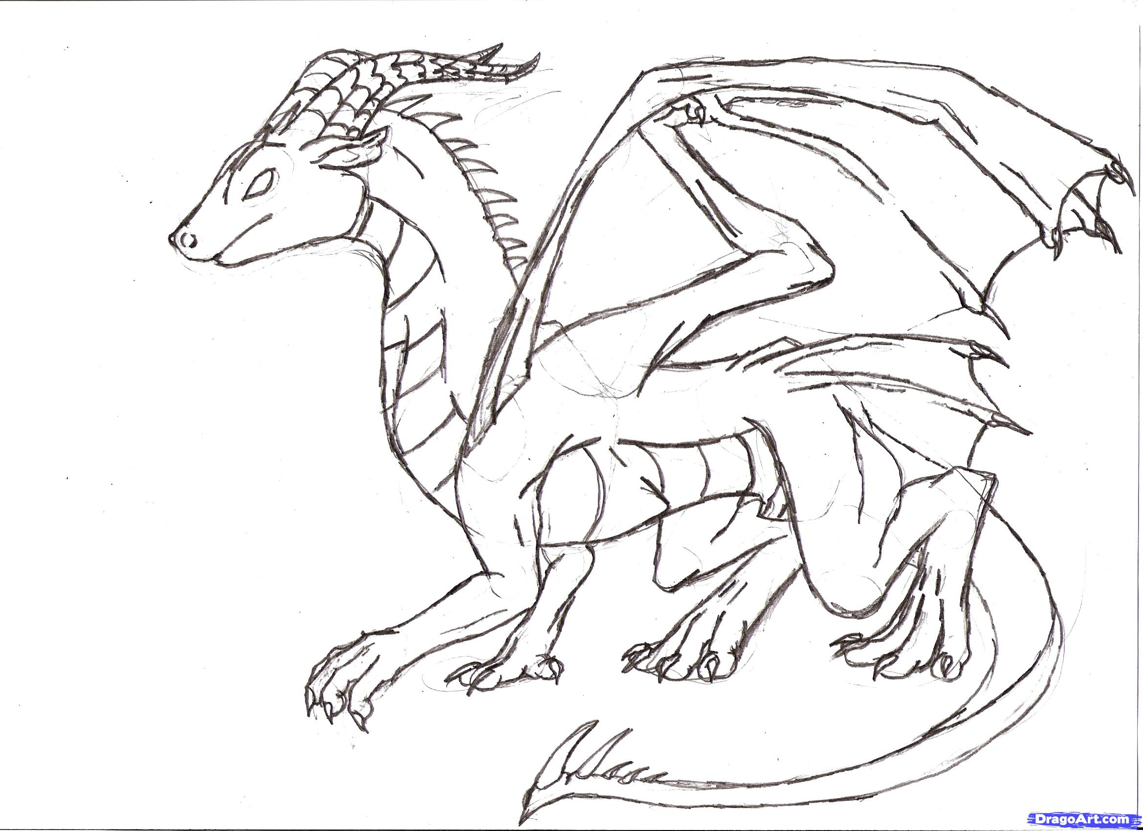2338x1700 Pictures Dragon Sketch Step By Step,