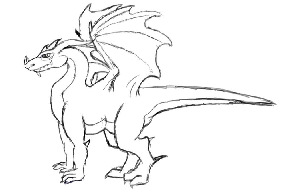 1024x678 Basic Dragon Sketch By Winggedmaster