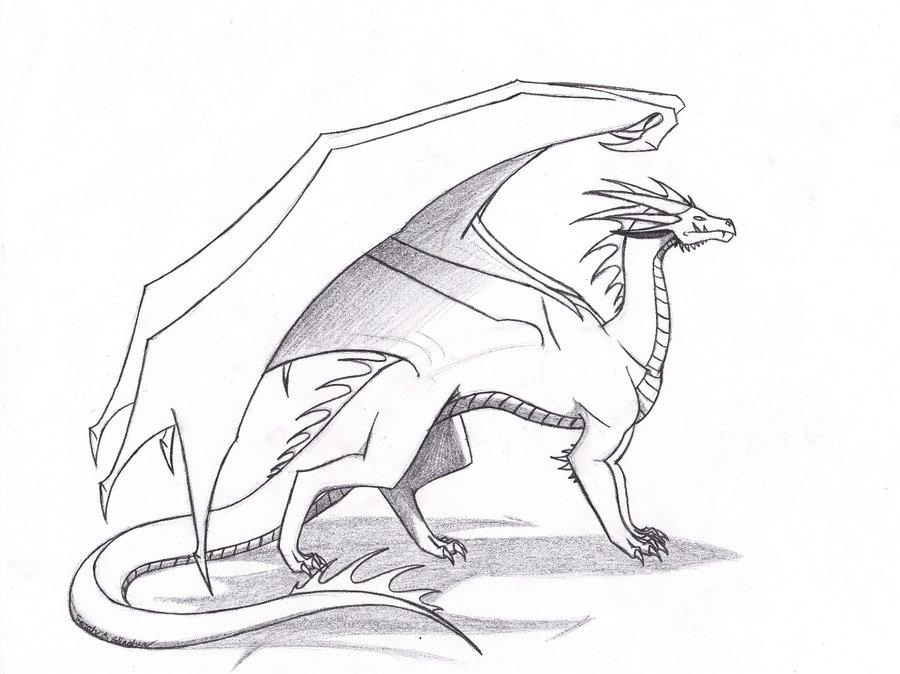 900x674 Basic Dragon. By Cornocte