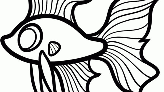 570x320 Simple Drawing Of Fish Magnificent Fish Drawings For Kids