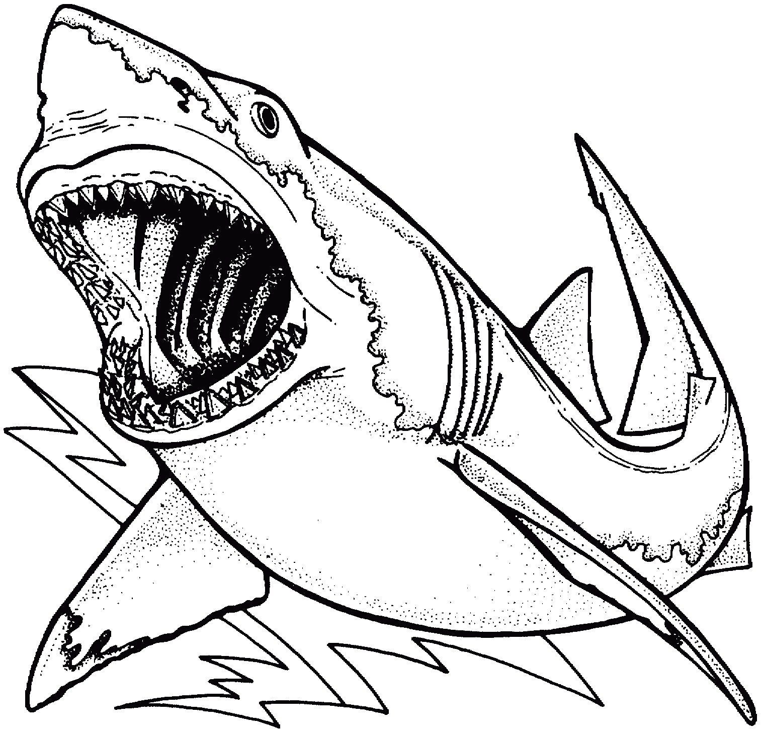 It's just a graphic of Clean shark coloring sheet