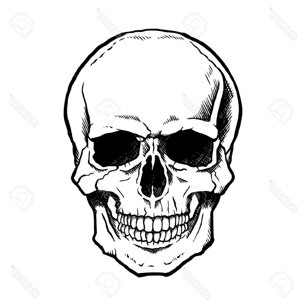 Skull Line Drawing Easy : Basic skull drawing at getdrawings free for personal