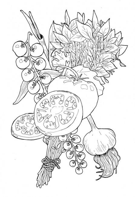 446x650 Drawing