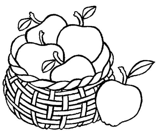 600x512 Drawing Apple Basket Coloring Pages Best Place To Color
